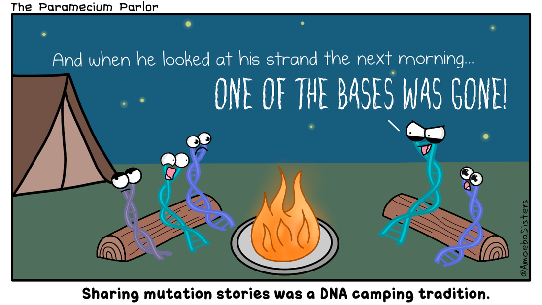 dna mutation comic science with the amoeba sisters. Black Bedroom Furniture Sets. Home Design Ideas